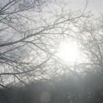 That's a Wrap! – 'Sundowning'